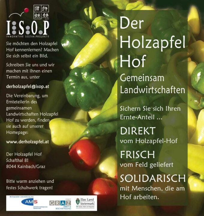 Holzapfel Info 2
