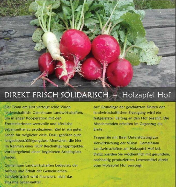 Info Holzapfel 2019