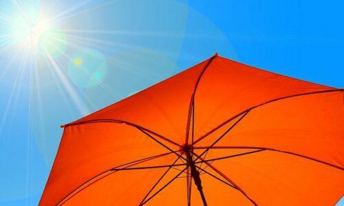 Summertime mit ISOP: Praktikant*innen gesucht!