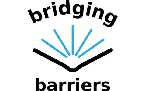 Bridging Barriers: Kompetenzen von Expert:innen in der Basis- und Erwachsenenbildung